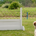 Focus and Anticipation