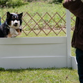 Louisa, High Jump
