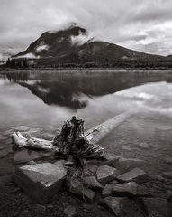 Log, Vermillion Lakes