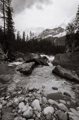 Yoho River at Meeting-of-the-Waters