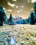 Mosquito Creek in infrared