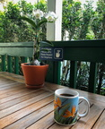 Coffee on the lanai